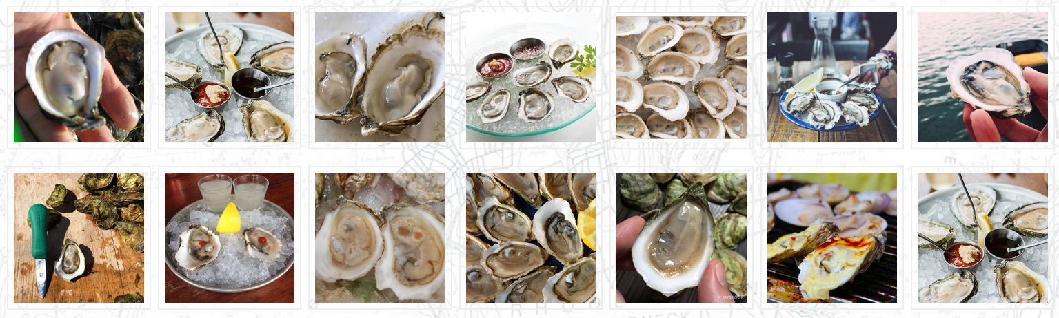 Best RI Oyster Types